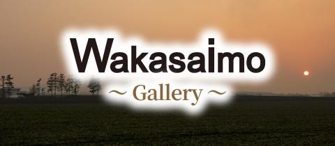 banner_gallery_en