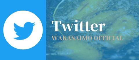 banner_sns_twitter