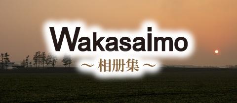 banner_gallery_cn