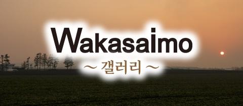 banner_gallery_ko