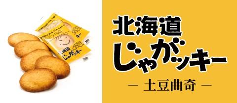 banner_jyagakie_cn